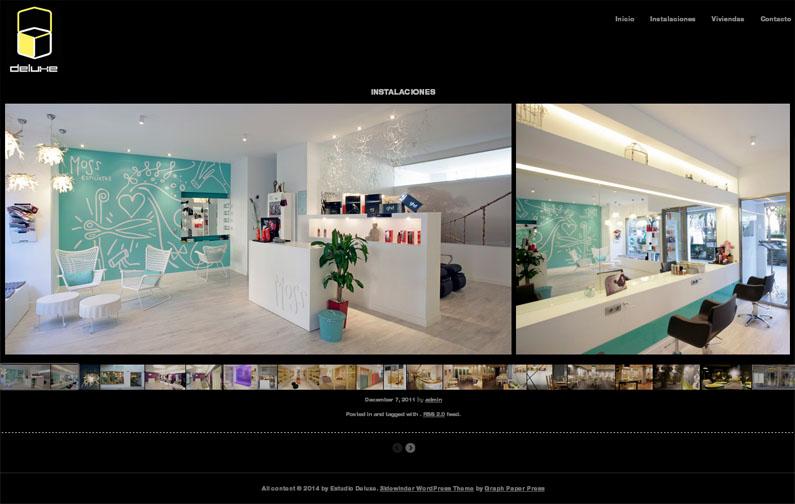 internet-paginas-web-estudio-delux-web-01